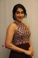 Actress Regina Candra Latest Stills in Maroon Long Dress at Saravanan Irukka Bayamaen Movie Success Meet .COM 0022.jpg