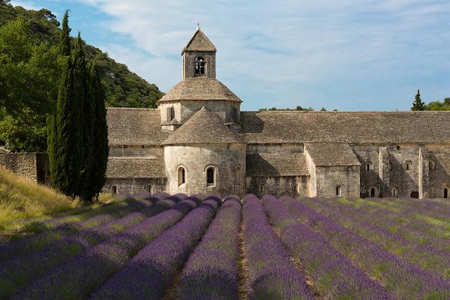 abbazia senanque luberon provenza