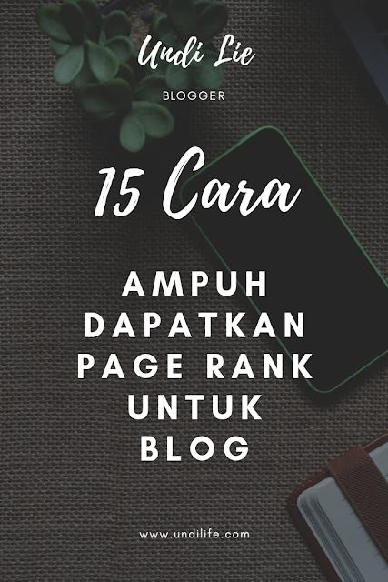 15 Cara ampuh dapatkan Page Rank!