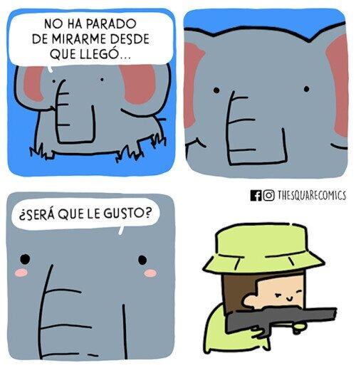 comic-cazador-elefante