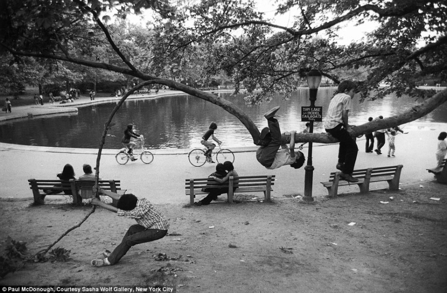 Central park pond kids in tree 1973