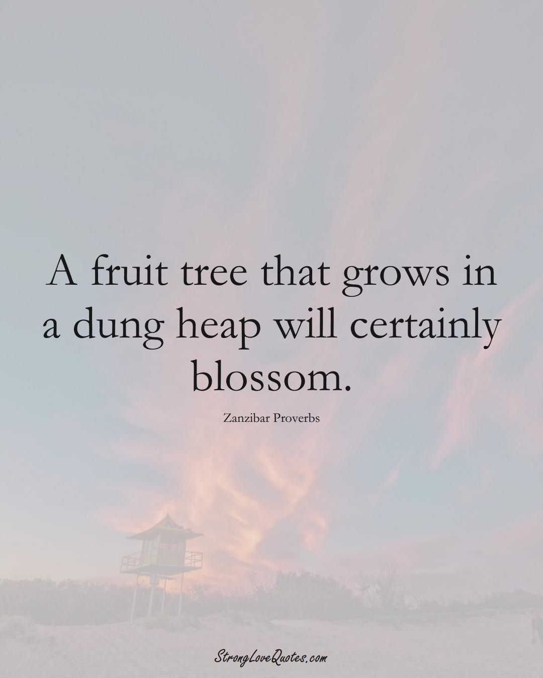 A fruit tree that grows in a dung heap will certainly blossom. (Zanzibar Sayings);  #AfricanSayings