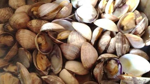 Πρέβεζα: Εντοπίστηκαν από το Λιμεναρχείο Πρέβεζας να αλιεύουν με απαγορευμένο αλιευτικό εργαλείο (φτυάρι)