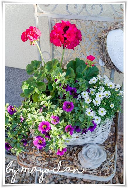 Pflanzendekoration
