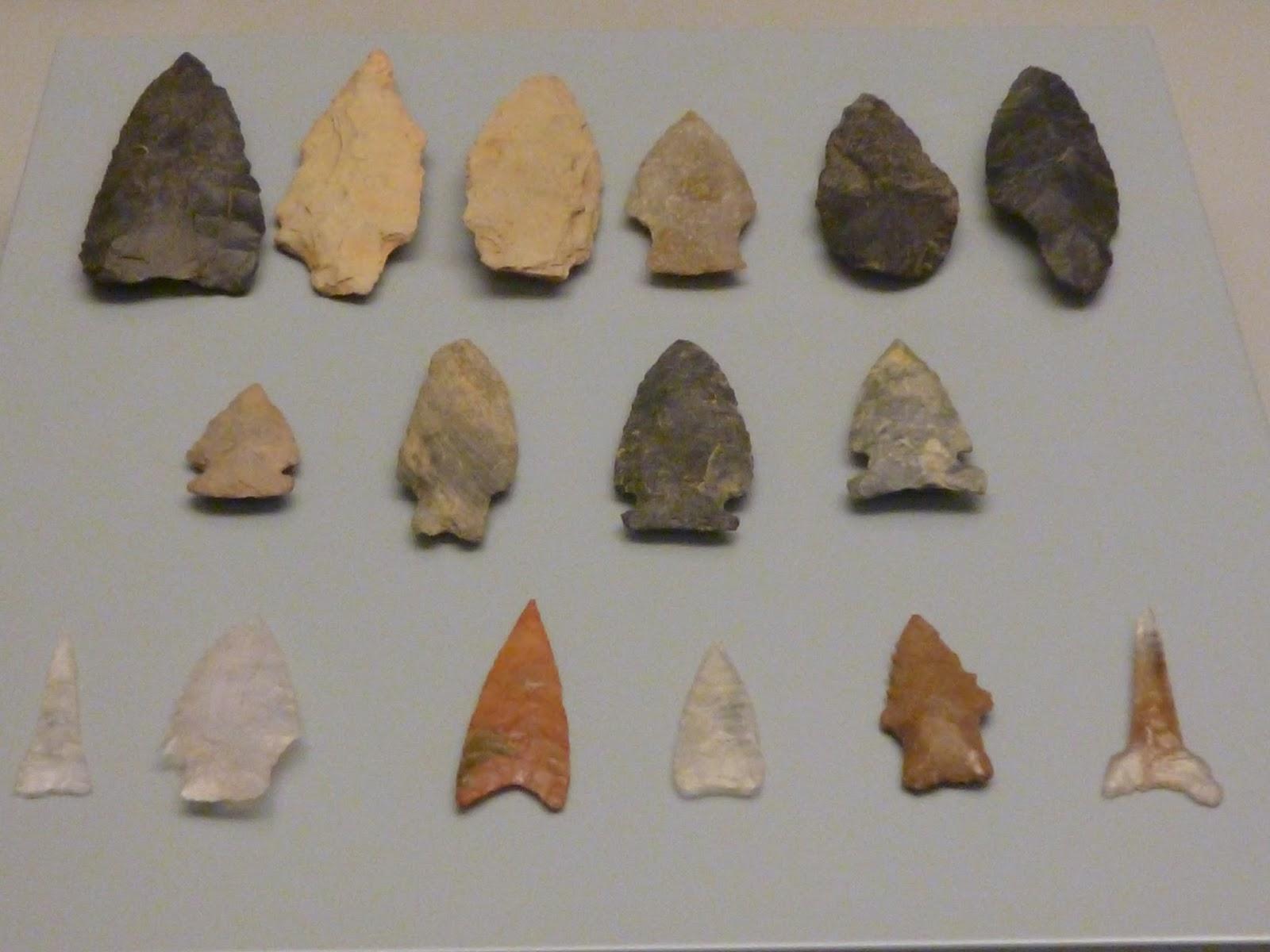 ANTROPOLOGA Y ECOLOGA UPEL Arqueologa de Venezuela  Paleo
