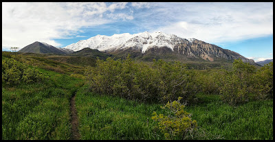 Gorgeous Green Fields with Baldy and snow covered Mount Timpangos in background