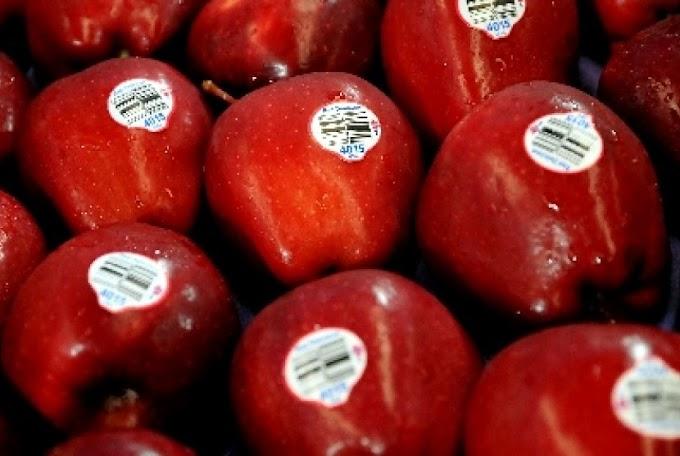 Wow!!! Luar Biasa..Ternyata Begini, Manfaat Buah Apel Untuk Mencegah Kanker