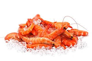 makanan yang dilarang bagi penderita asam urat