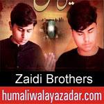 https://humaliwalaazadar.blogspot.com/2019/08/zaidi-brothers-nohay-2020.html