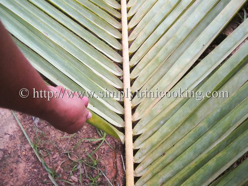 How to Make a Cocoyea Broom