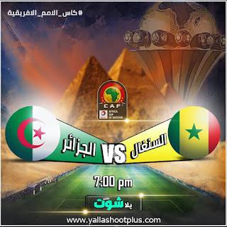 مشاهدة مباراة الجزائر والسنغال بث مباشر اليوم 27-6-2019 في كاس امم افريقيا 2019