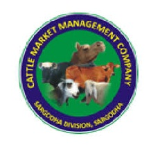 Latest Jobs in Cattle Market Management  Company CMMC 2021