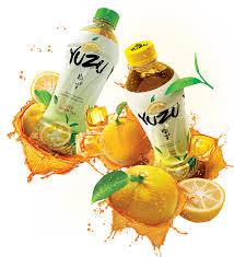 Kandungan Minuman Dari Buah Yuzu Citrus
