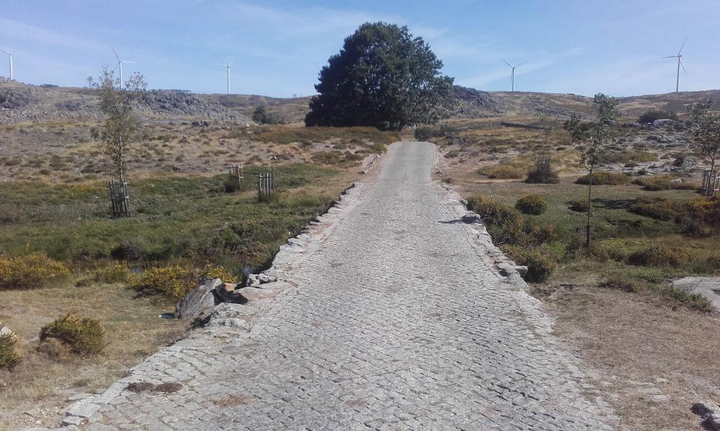 Estrada em Paralelos até ás pedras