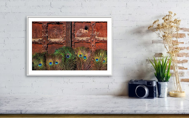 Peacock Feathers Wall Art Framed Print