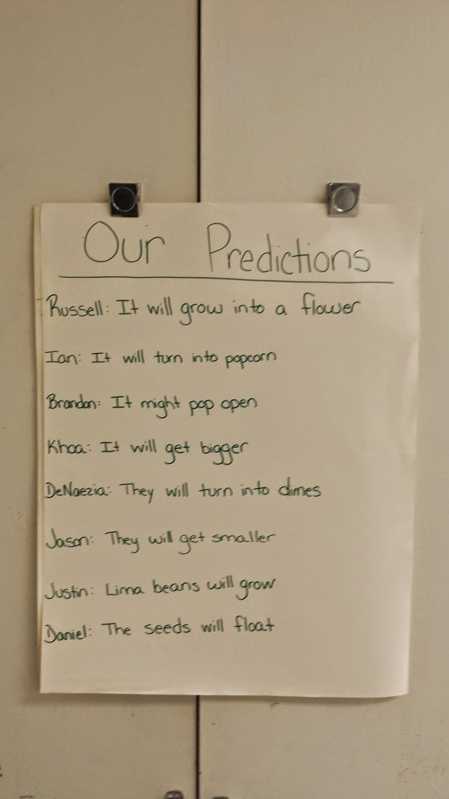 photo predictions the class made