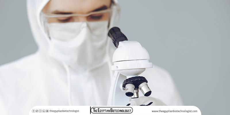 الفرق بين التكنولوجيا الحيوية والهندسة الوراثية