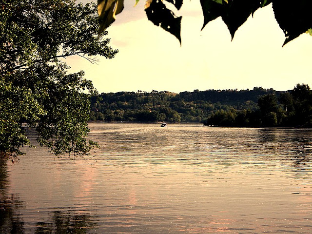"Obala reke Tise kod popularne ""pumpe"" blizu ušća u Dunav"