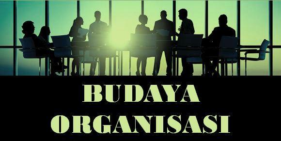 Pengertian Budaya Organisasi : Fungsi, Karakteristik dan Indikatornya