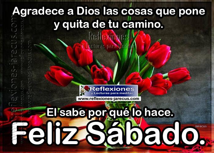 Feliz sábado, agradece a dios las cosas que pone y quita de tu camino, el sabe porque lo hace.