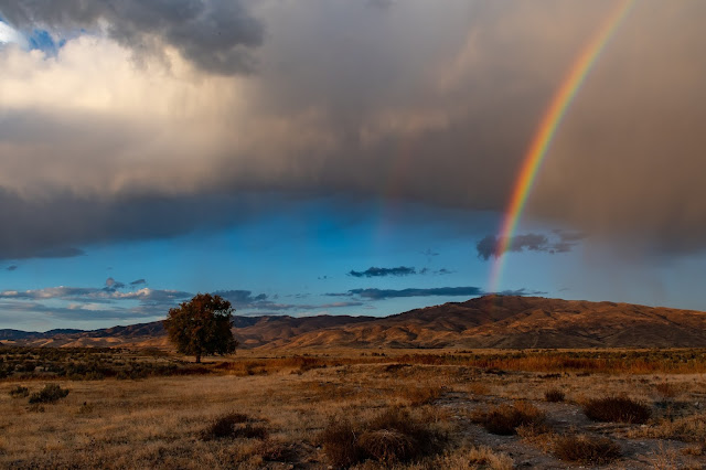 Rainbow Wallpapers in 4K - Pics-Directory