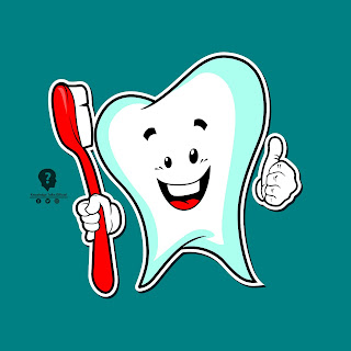 What Is Plaque And Tartar & How To Whiten Teeth