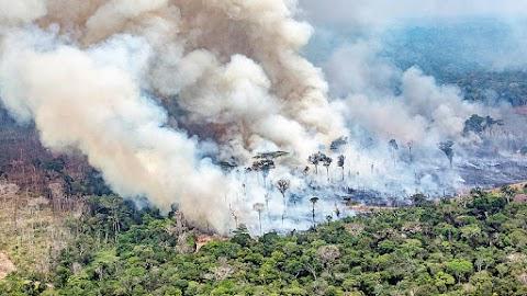 Százmillió dolláros amerikai-brazil befektetési alapot hoznak létre Amazónia védelmére