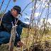 INDAP posterga por 90 días vencimiento de créditos que mantienen pequeños agricultores