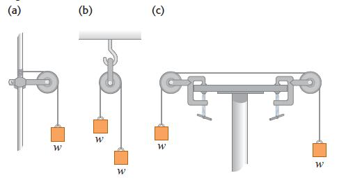החוק השני של ניוטון - מסות תלויים על חבלים מחוברים לגלגלות - תרגיל פתור