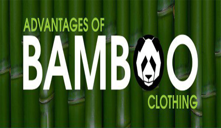 Advantages Of Bamboo Clothing #infographic