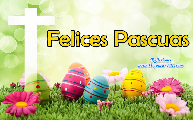 FELICES PASCUAS !