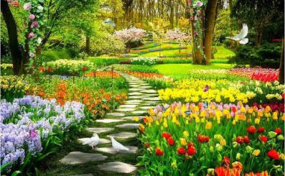 Download PPT The Garden Is Taken Care Of | Bahasa Inggris SMP/MTs Kelas 9 (Revisi)