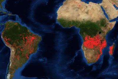 Кобра - 2020-й год  5 сентября 2019 года  Fires