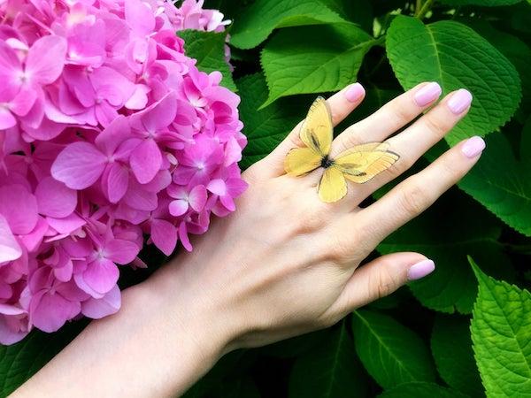 yellow%2Bbutterfly%2Bsilk%2Bring