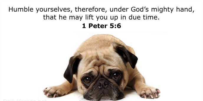 Humble yourselves, therefore, under God's mighty hand, that he may lift you up in due time.