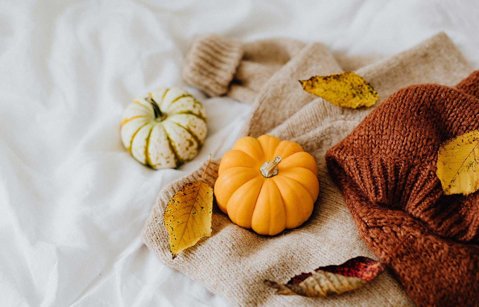 automne citrouille thanksviging