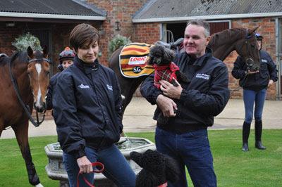 Steve Gollings Horse Trainer