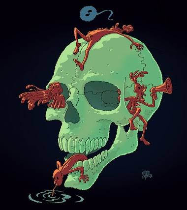 high skull