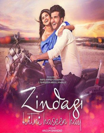 Zindagi Kitni Haseen Hay (2016) Urdu 480p HDRip