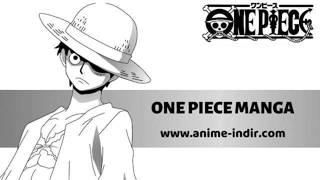 one-piece-manga-indir-resim