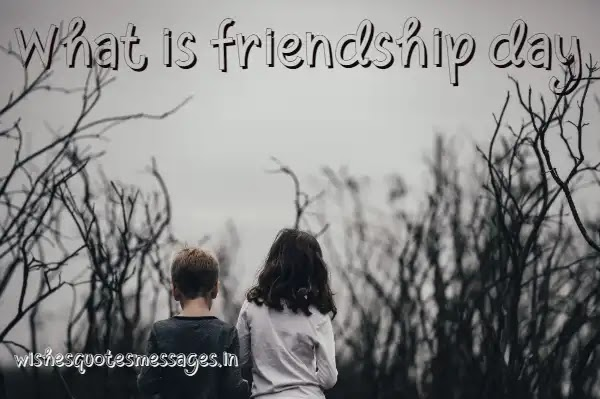 What is a friendship day?