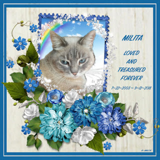 Milita's Rainbow Bridge badge.