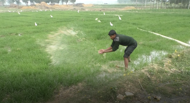 Farmers upset due to not having a government tubewell