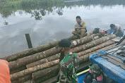 Satgas Pamtas Yonif 642/Kps Amankan 4 Pelaku Ilegal Logging