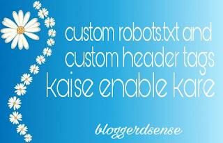 Custom robots header tags kaise enable kare