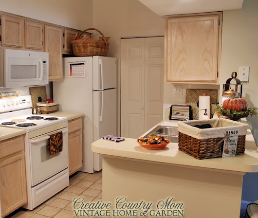 The Tiny Little Apartment Kitchen in Alabama
