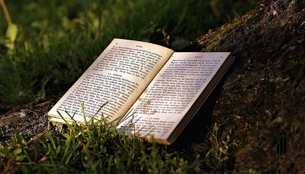 libros de dominio de la mente