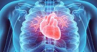 Rekomendasi Dokter Spesialis Penyakit Dalam Kardiovaskular di Jakarta Utara yang Bagus