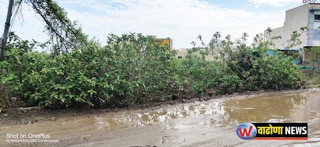 हिमायतनगर शहरालगतच्या नाल्यात गाळ - झुडपे वाढल्याने शहराला पुराच्या धोक्याची शक्यता -NNL