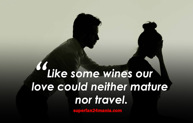 Like some wines our love could neither mature nor travel.